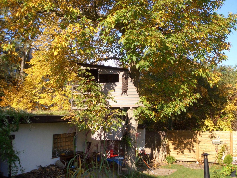 baumhaus-privat